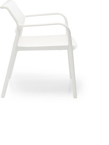 Ara 316 - kunststof lounge stoel met armleggers-8