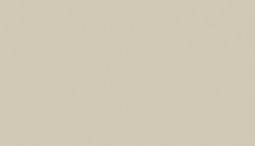 D013 Platina grijs